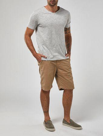 Camiseta-Peixes-Cinza