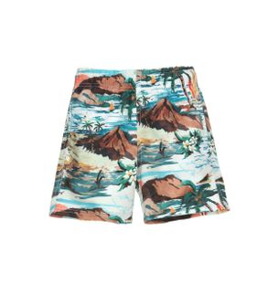 Short-Cena-Havaiana-Boys-Estampado