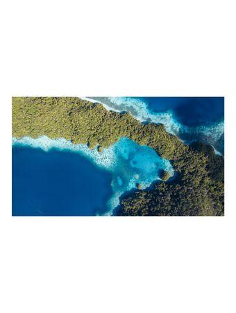 Jellyfish-Lake-Palau-Papel-Algodao