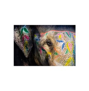 Painted-Elephant-I-Fotografia