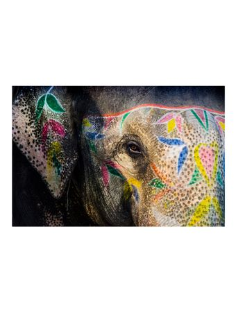 Painted-Elephant-I-Fotografia