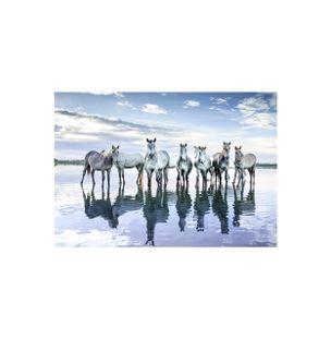 Blue-Reflection-Papel-Algodao