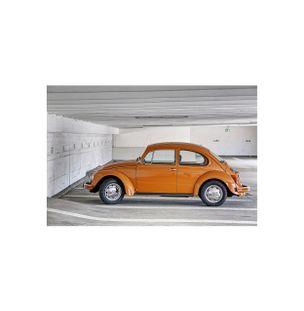 Beetle-Papel-Algodao