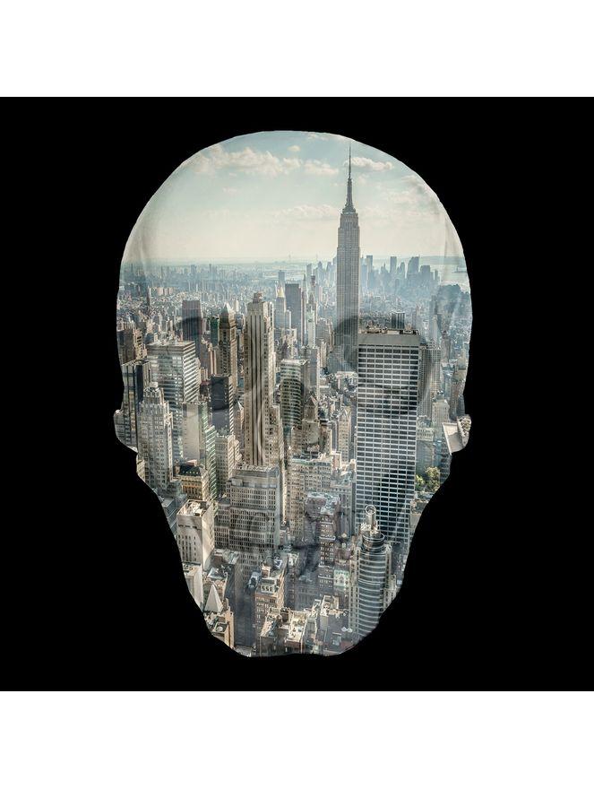 skull-democrart