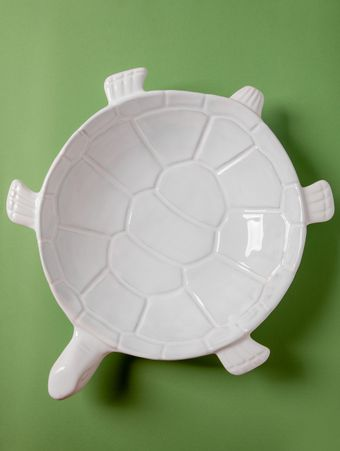 Saladeira-Tartaruga