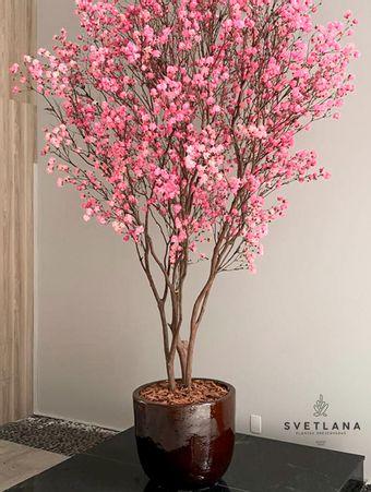 Arvore-preservada-com-flores--cor-de-rosa-branca-ou-amarela--350-Arvore-preservada-com-flores--cor-de-rosa-branca-ou-amarela--350