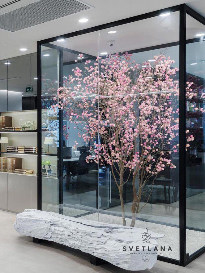 Arvore-preservada-com-flores--cor-de-rosa-branca-ou-amarela--250-Arvore-preservada-com-flores--cor-de-rosa-branca-ou-amarela--250
